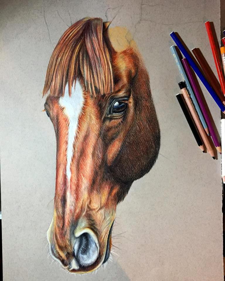 Ritratti equestri